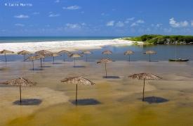 027102 mar 15 Praia Bela Conde PB Foto Cacio Murilo