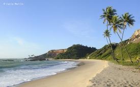 _DSC2059 fotografo joao pessoa Praia de Coqueirinho trok copy